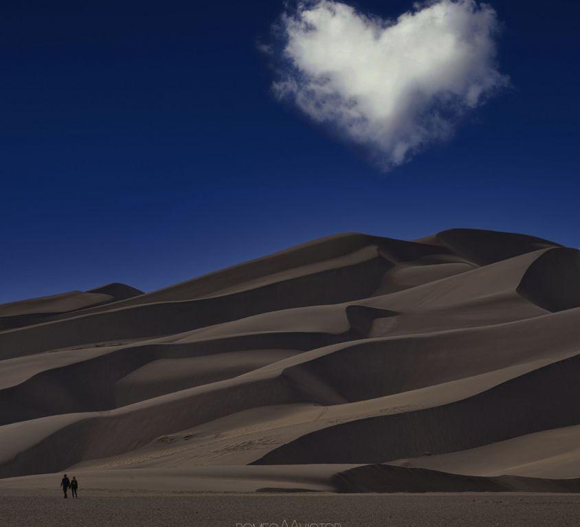 Desert Love rMv